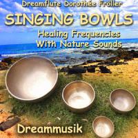 Heilsame Meditationsmusik mit Klangschalen, Rife- und Solfeggiofrequenzen
